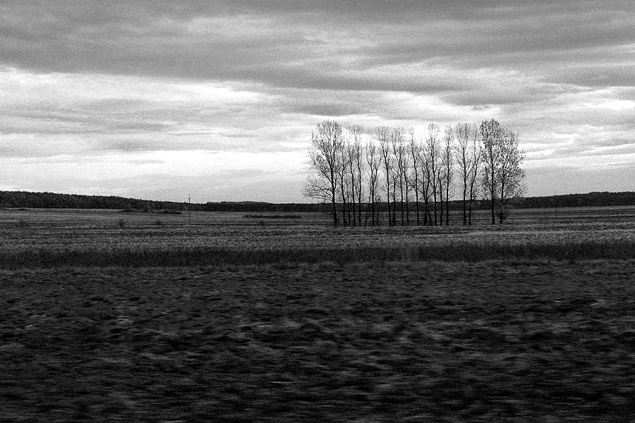 Krajobraz współczesny